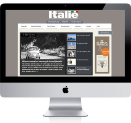 website-dsvi
